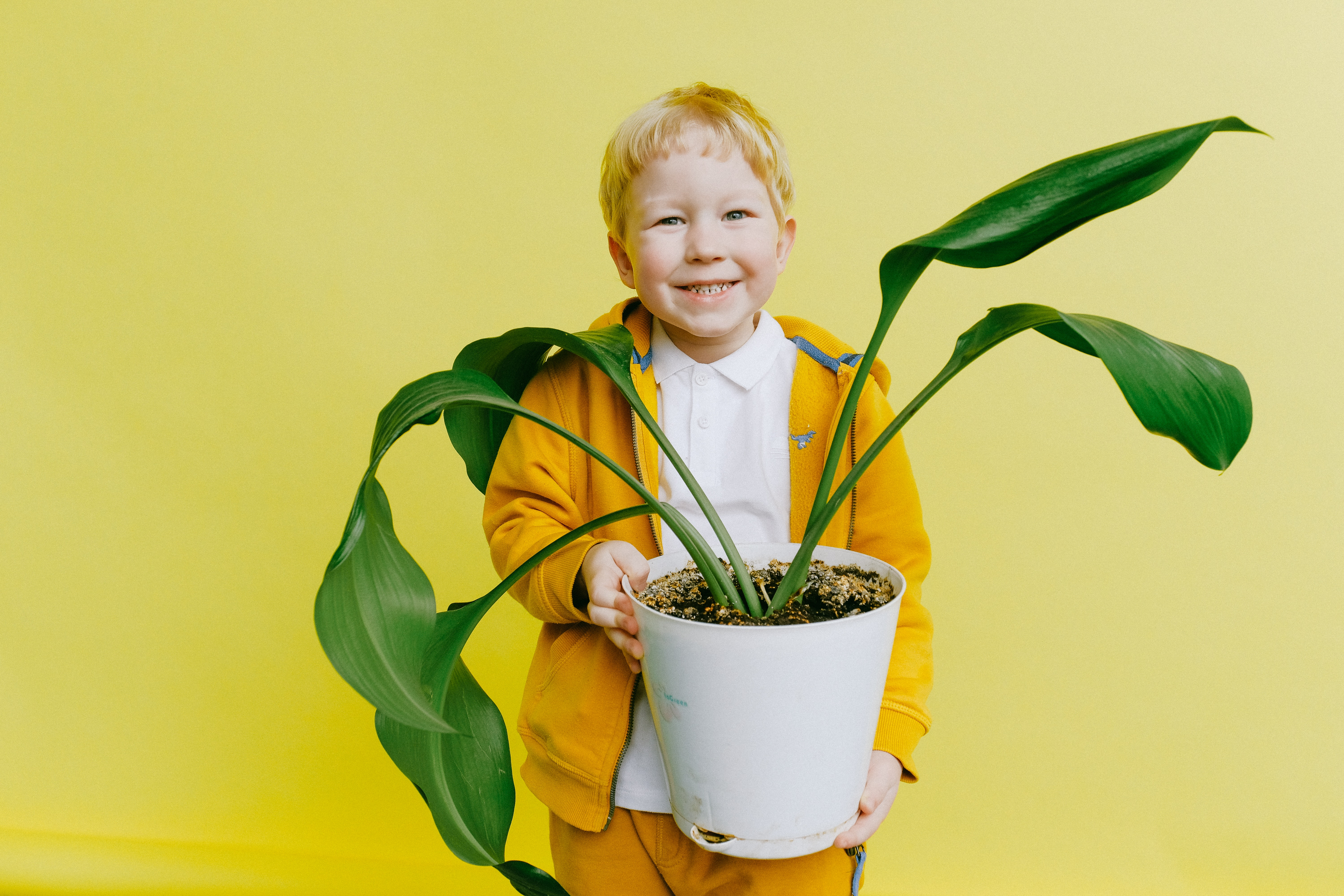 boy-in-yellow-jacket-and-white-shirt-holding-green-plant-in-3771643